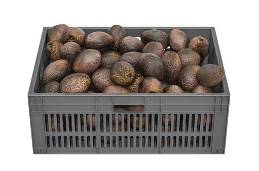istock Avocado in the plastic crate, 3D rendering isolated on white background 1183407976