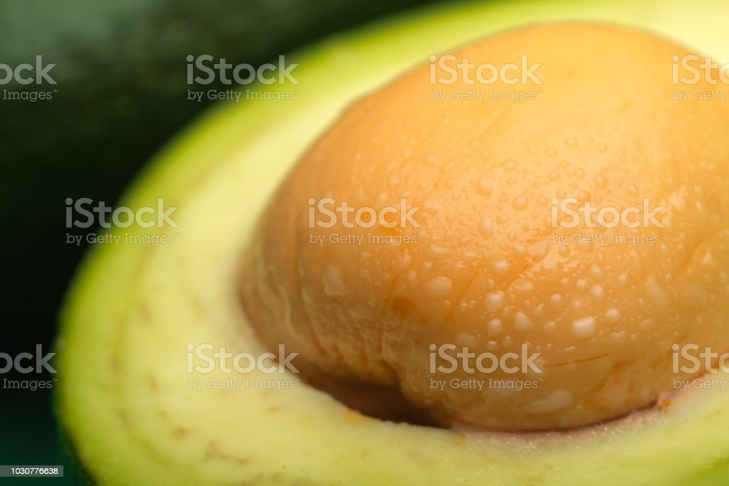 Avocado. stock photo