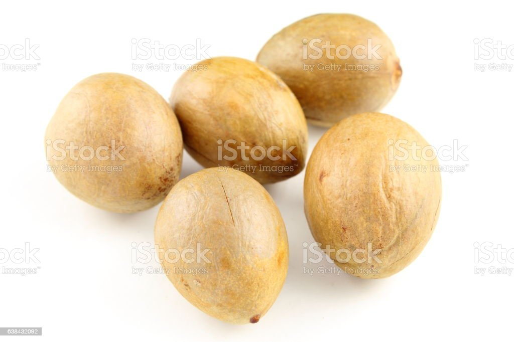 avocado seeds isolated on a white background stock photo