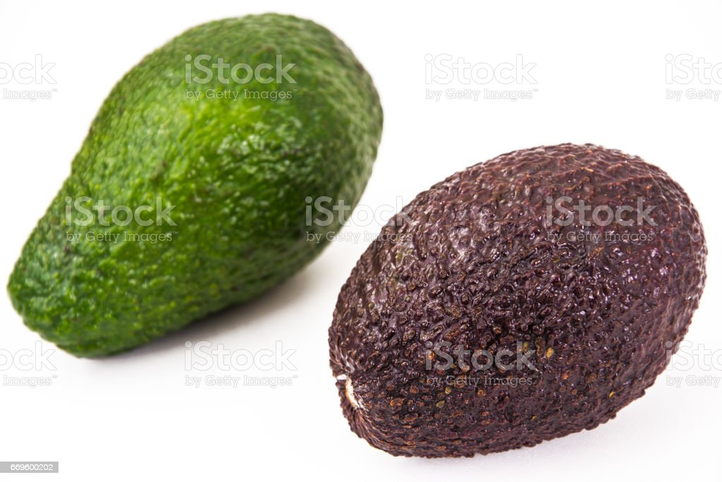 Avocado whole and cut stock photo