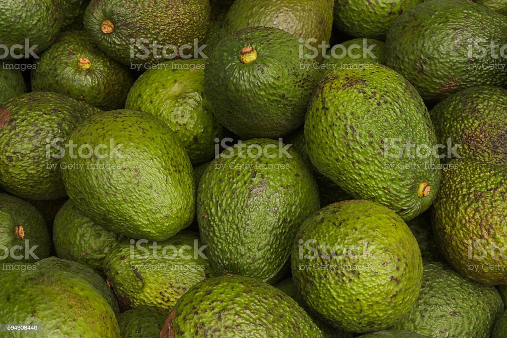 Avocados for sale at a market stock photo