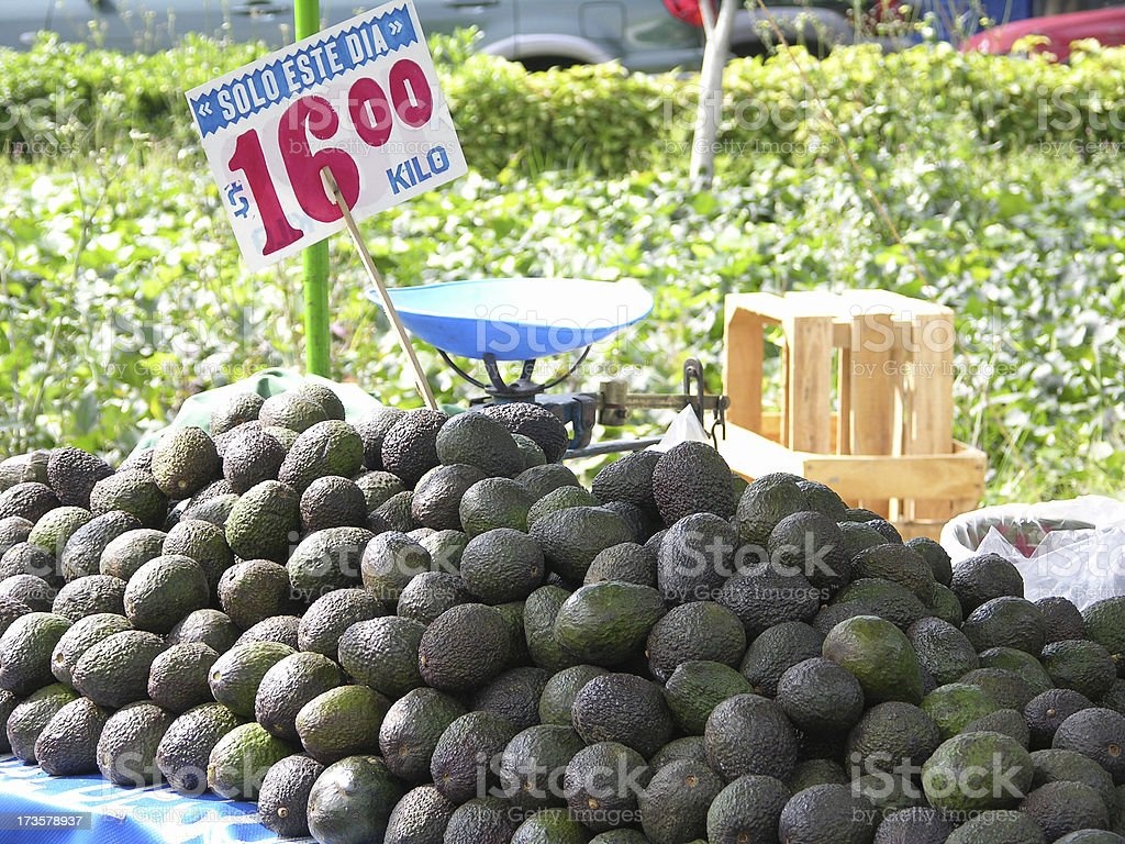 aguacates royalty-free stock photo