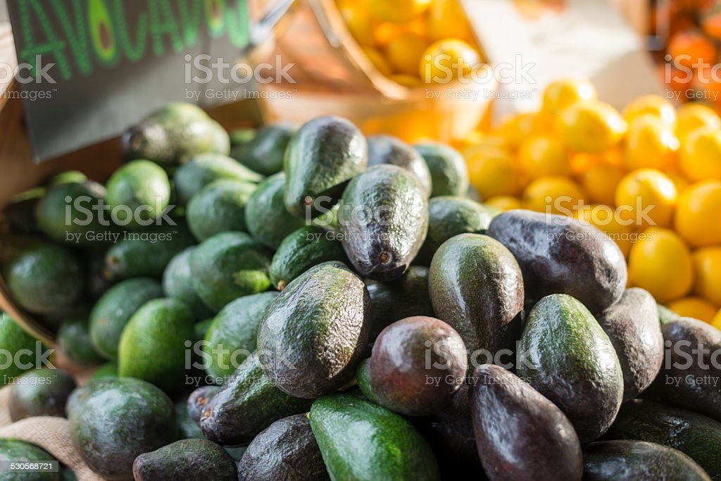 Avocados stock photo