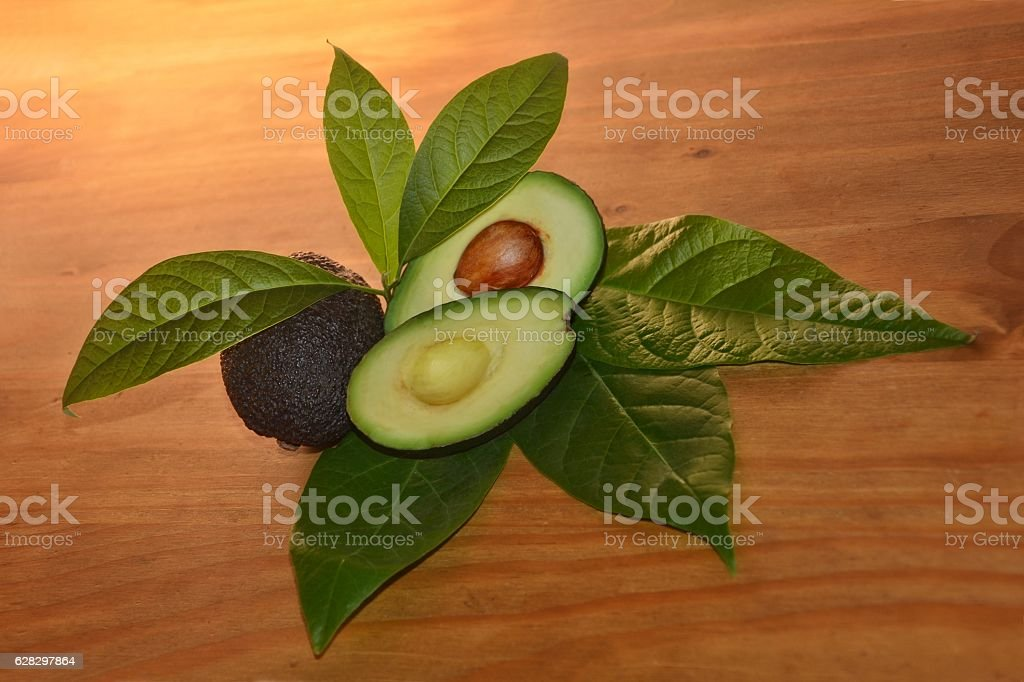 Avocados with leafs on wood (Persea gratissima) stock photo