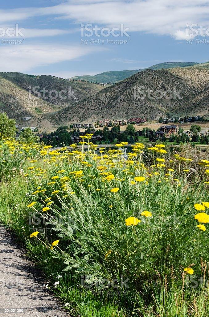 Avon Colorado Scenic Overview stock photo