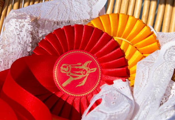 Prix rosettes en sport équestre, rouge et jaune. Rubans de prix pour le concours hippique, champion, compétition. - Photo