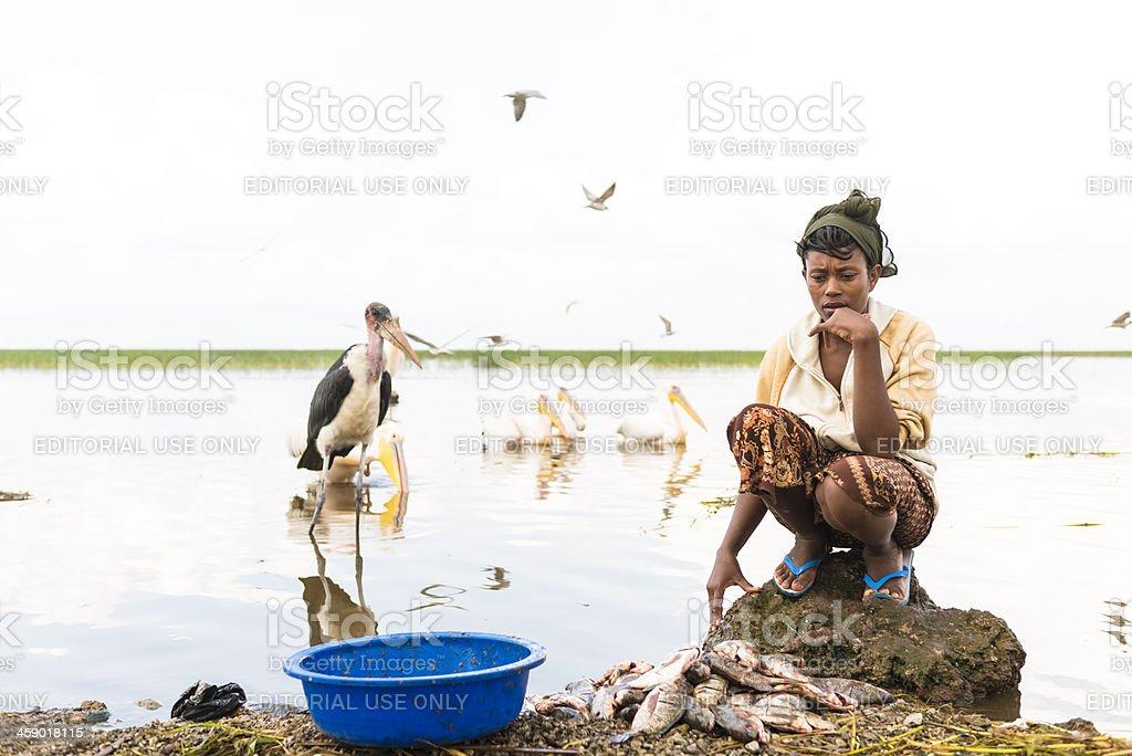 Awasa fish market stock photo