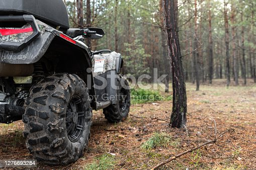 ATV awd quadbike motorcycle back pov view near tree in coniferous pine foggy forest with beautiful nature landscape morning mist. Offroad travel adventure trip expedition. Extreme recreation activity.