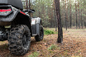istock ATV awd quadbike motorcycle back pov view near tree in coniferous pine foggy forest with beautiful nature landscape morning mist. Offroad travel adventure trip expedition. Extreme recreation activity 1276693284