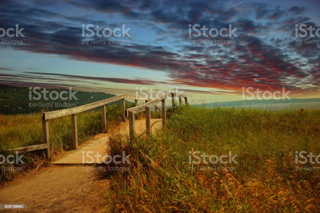 tall grass field sunset. Awe Sunset Landscape Tall Grass, Beach, Wooden Bridge, Charlevoix, Quebec, Canada Grass Field