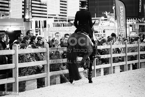 istock Awe when dressage rider Edward Gal is warming up 515858518