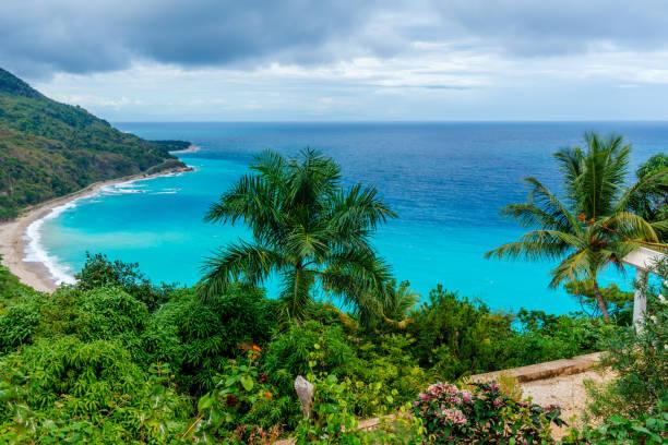 awesome caribbean landscape - pirania zdjęcia i obrazy z banku zdjęć