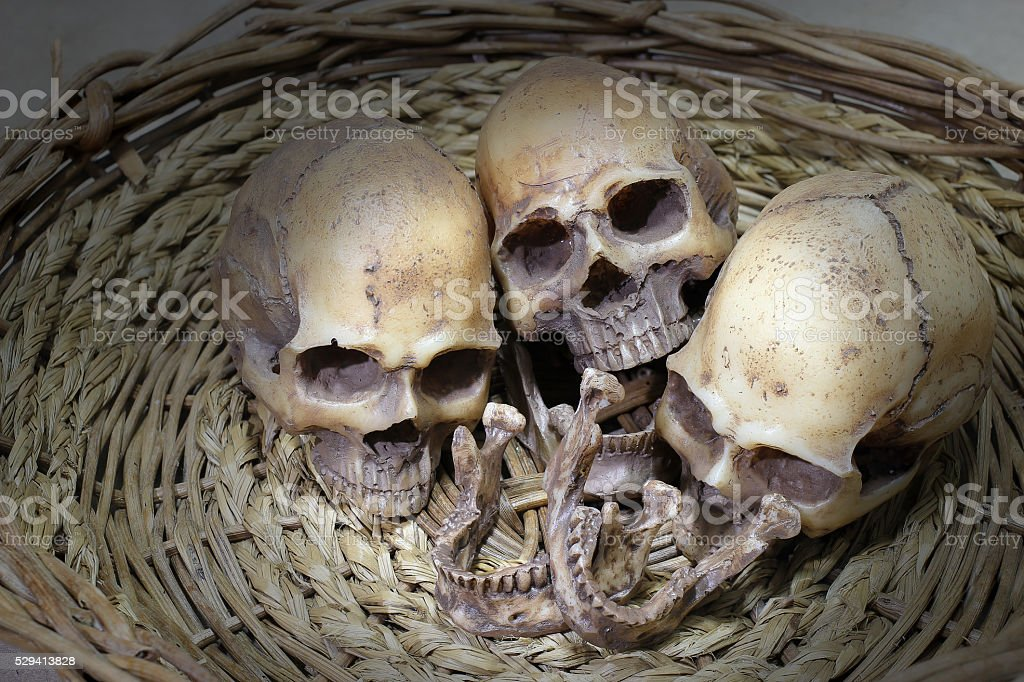Awesome, group of skull, Still Life style stock photo