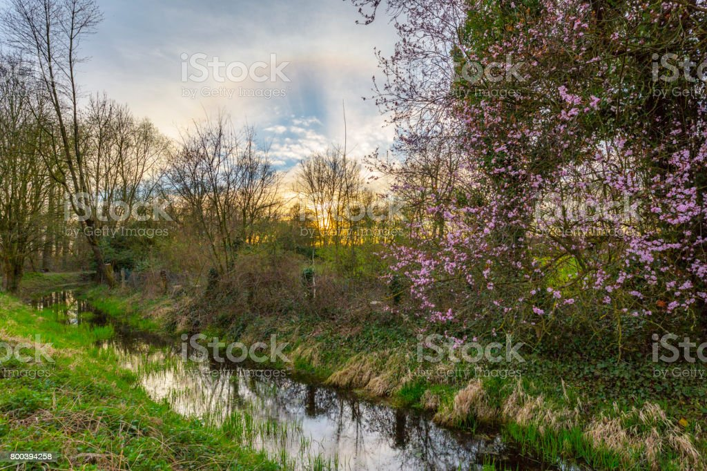 Awesome Springtime Sunset at Creek/ Germany stock photo