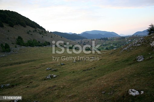 istock Awesome valley with green grass and with mountains on back 1316909389