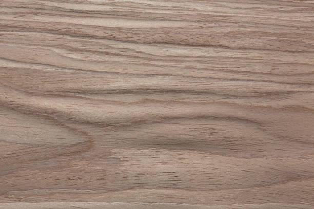 awesome furnier textur in sanften hellen farben - walnussholz stock-fotos und bilder