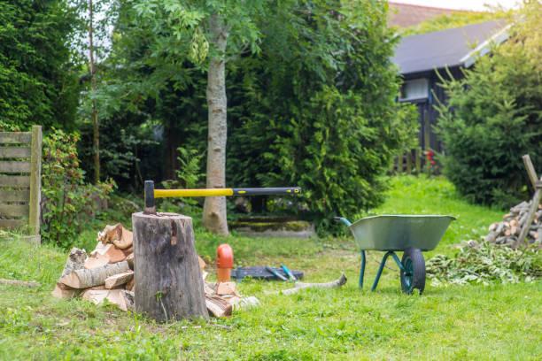 Axe_Backyard_1 – Foto