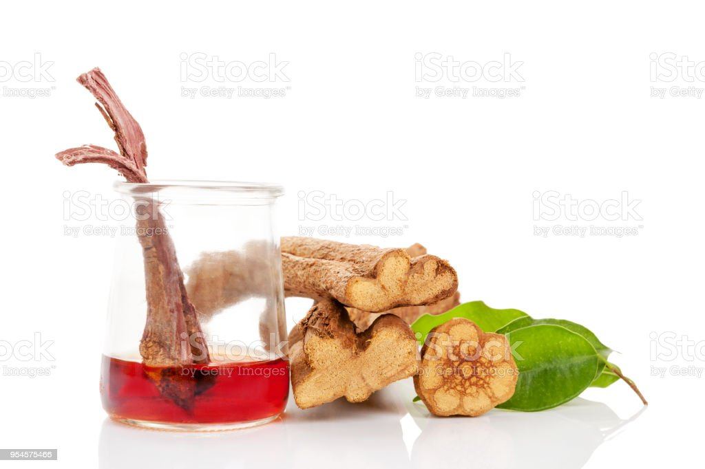 Ayahuasca brew in glass with banisteriopsis caapi wood. stock photo