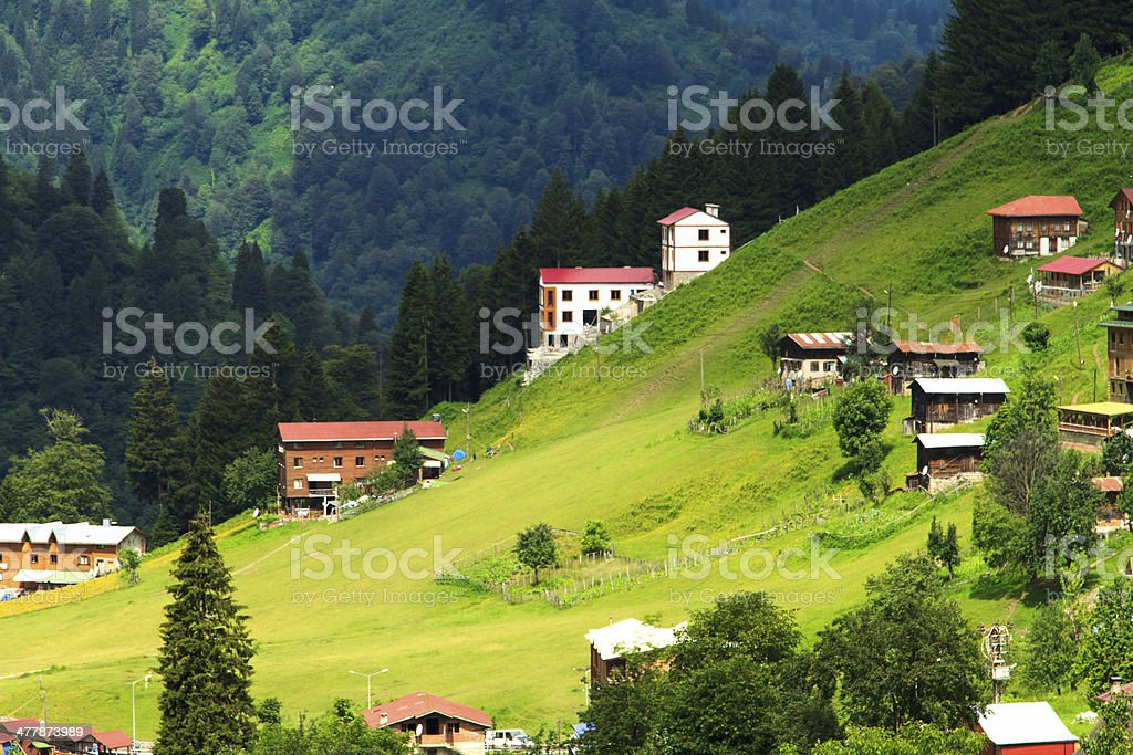 Ayder Plateau stock photo
