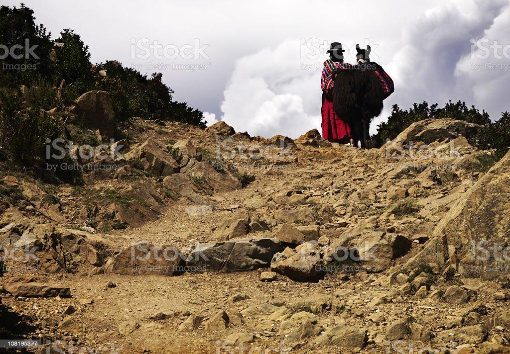 Aymara woman and her llama stock photo