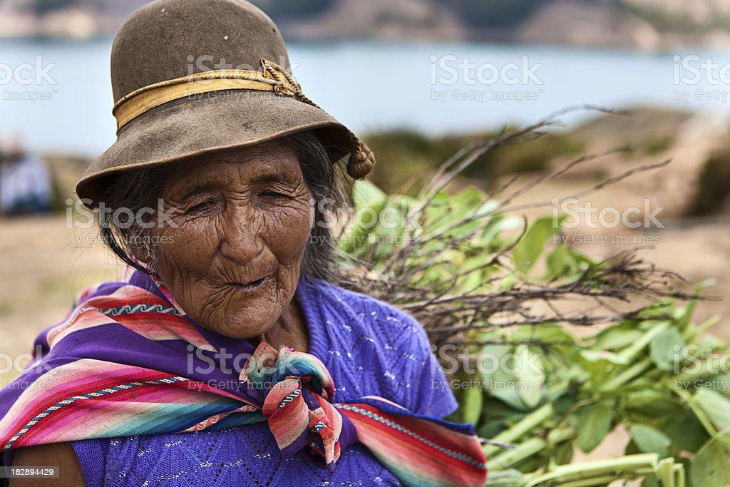 Aymara mulher carregando com arbustos, Isla del Sol, Bolívia - foto de acervo