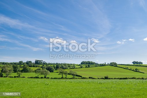 Ayrshire Fields behind the conservation village of Symington in South Ayrshire with green fields and trees at the centre of Robert Burns