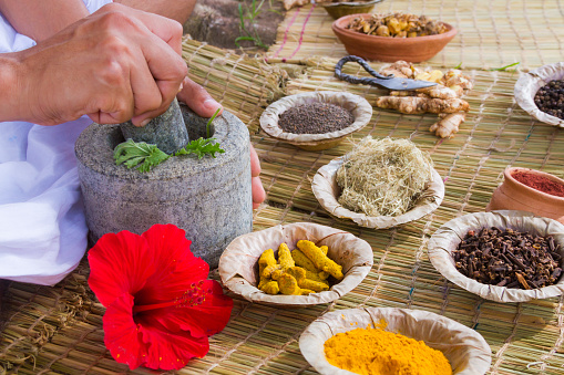 Ayurvedic Doctor Stock Photo - Download Image Now