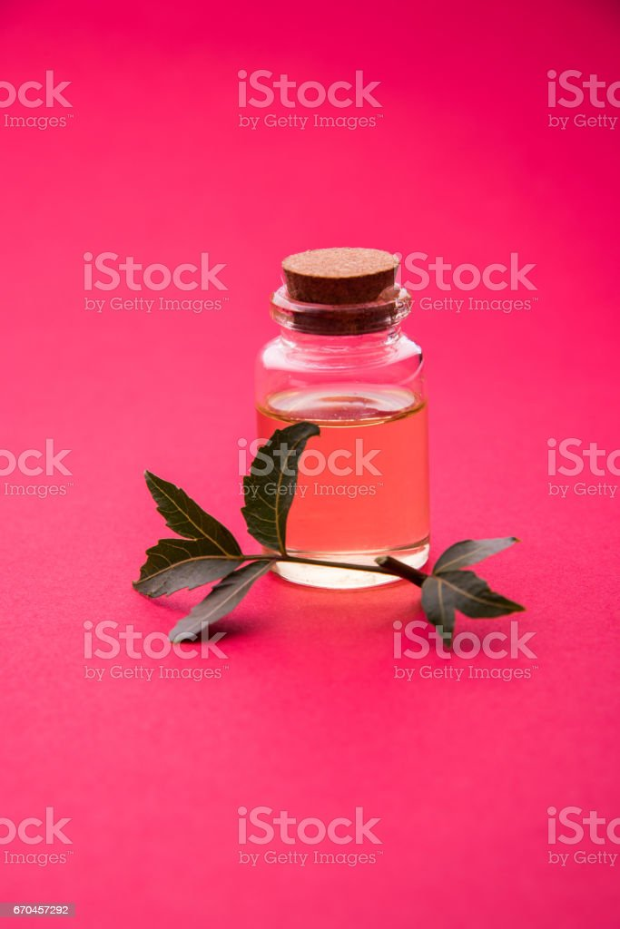 Ayurvedic Herbs Neem with Oil in bottle with mortar stock photo