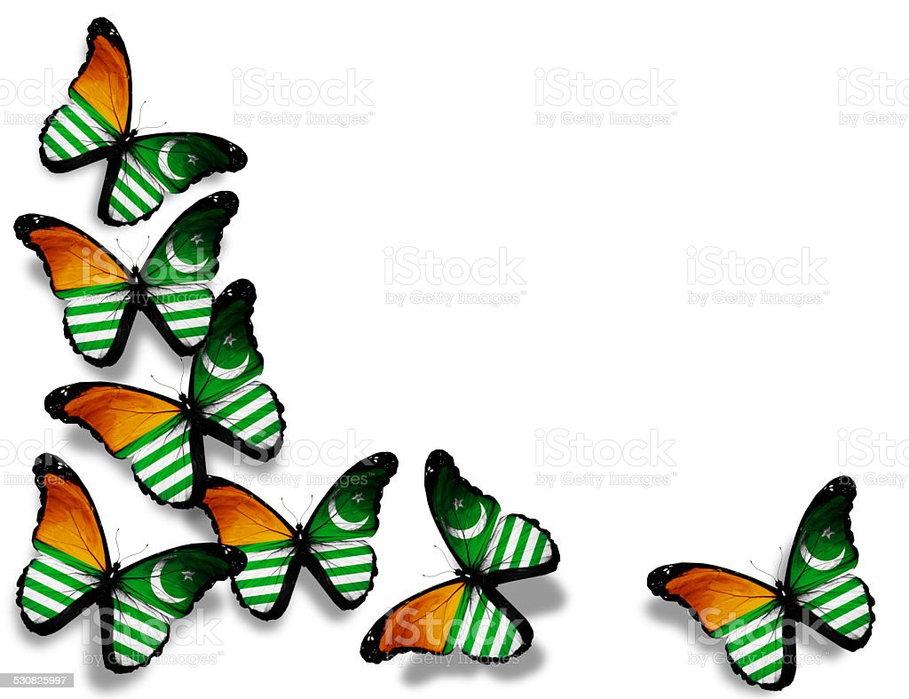 Azad Kashmir flag butterflies, isolated on white background stock photo
