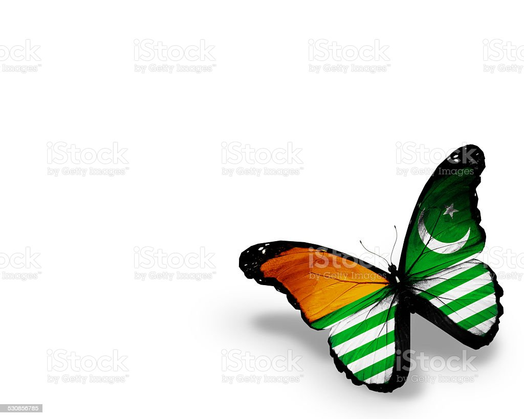 Azad Kashmir flag butterfly, isolated on white background stock photo
