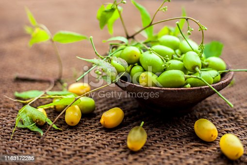 Azadirachta indica, commonly known as neem, nimtree or Indian lilac, on jute bags surface along with its fruit in a clay bowl.Used for its medicinal properties and much more.Horizontal shot.