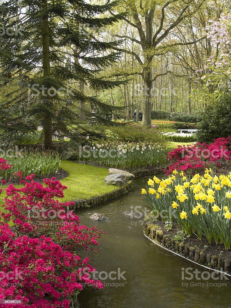 Azaleas and Stream royalty-free stock photo