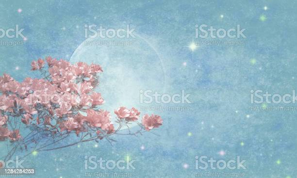 Photo of Azaleas over Magical Sky with Full Moon and Stars - Atmospheric Mood