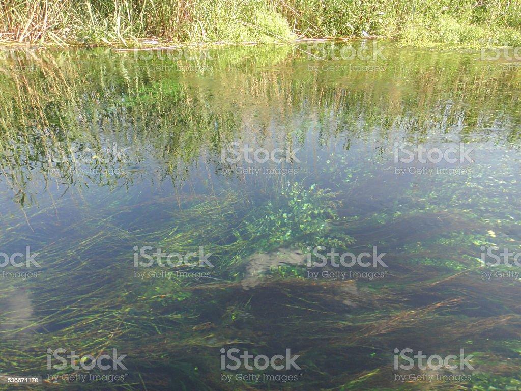 Azmak river in Turkey. Asia Minor nature stok fotoğrafı