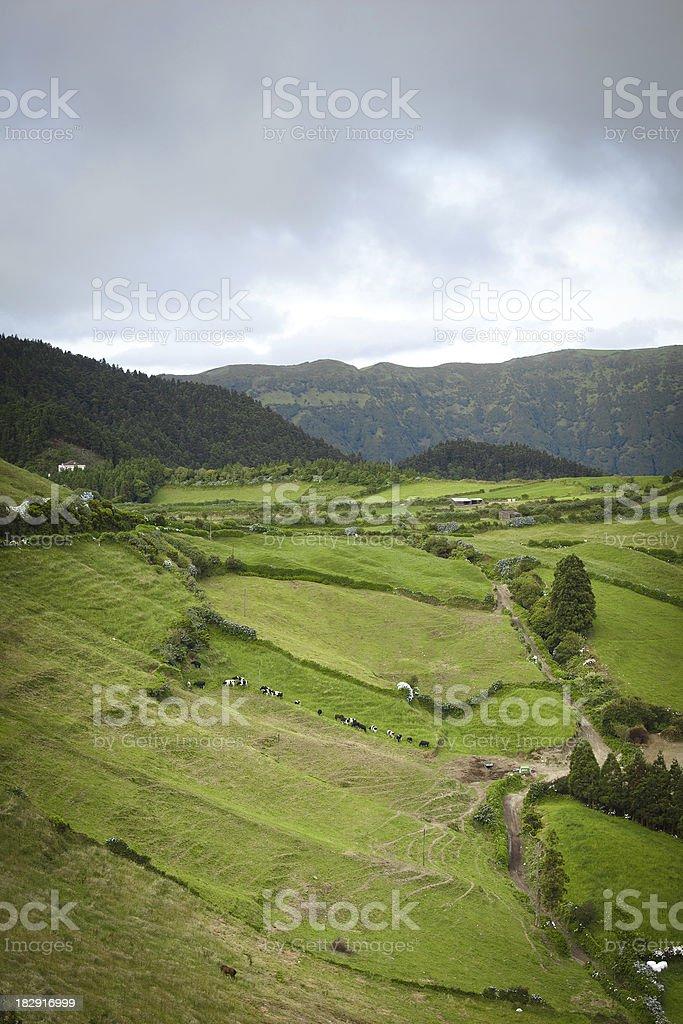 Azorean landscape stock photo