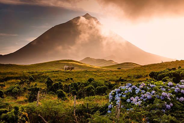 Azorian Vulkan Pico mit Nebel Sie über – Foto