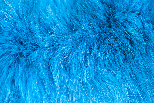 Azure furry texture. Abstract animal navy blue fur background. Fluffy turquoise pattern for design