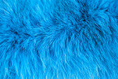 istock Azure furry texture. Abstract animal navy blue fur background 1272613704