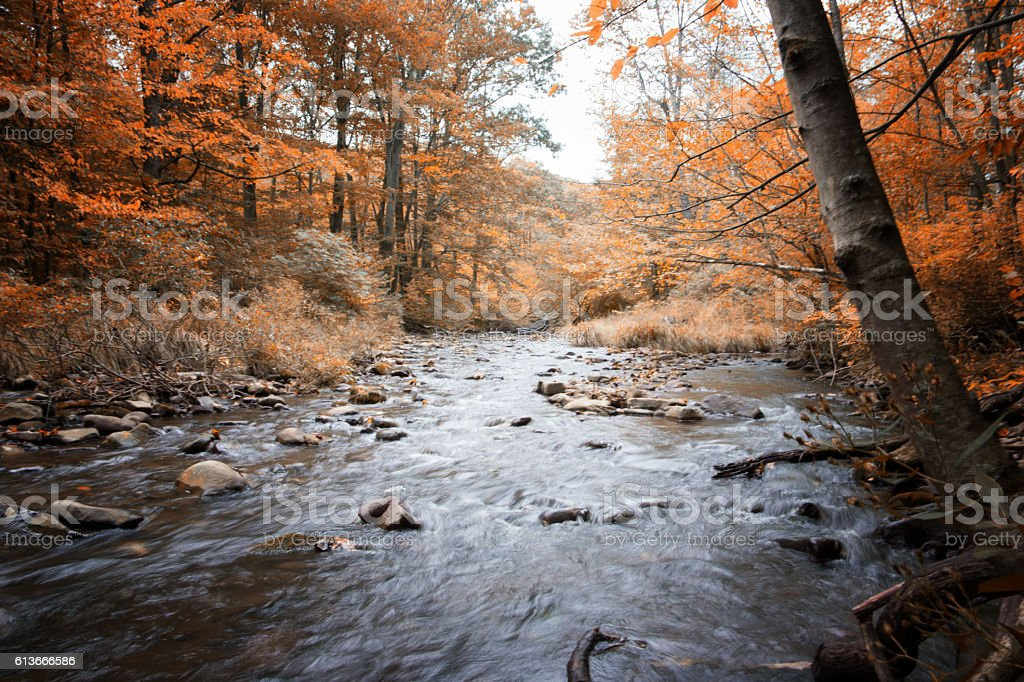 babbling brook in rural Pa stock photo