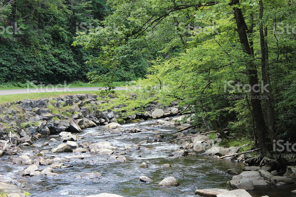 Babbling Brook in Smokey Mountains stock photo