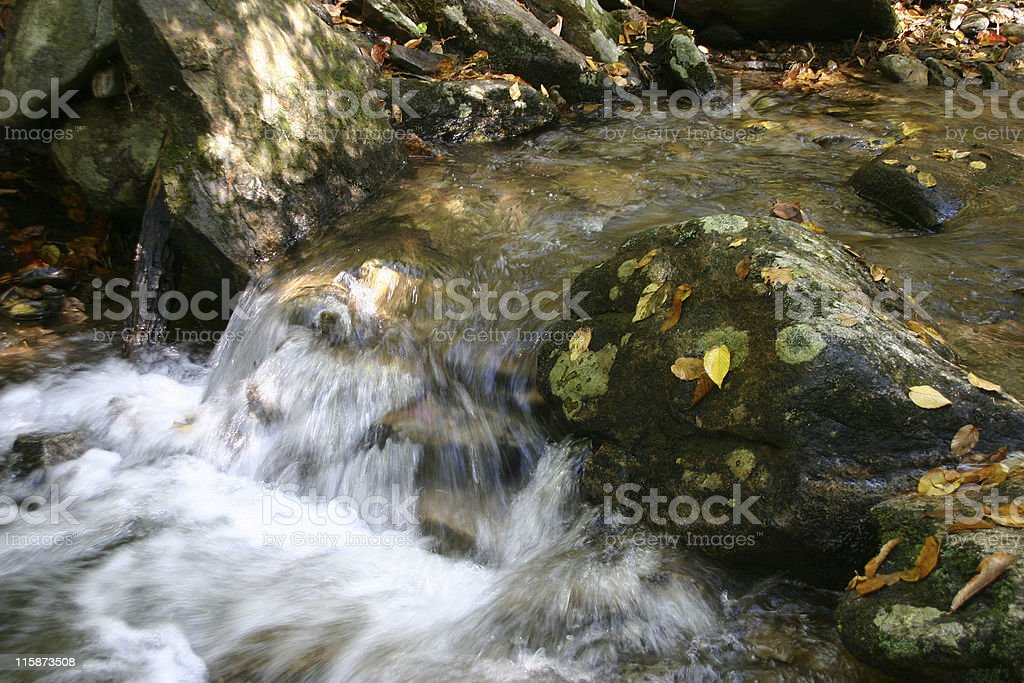 Babbling Brook royalty-free stock photo