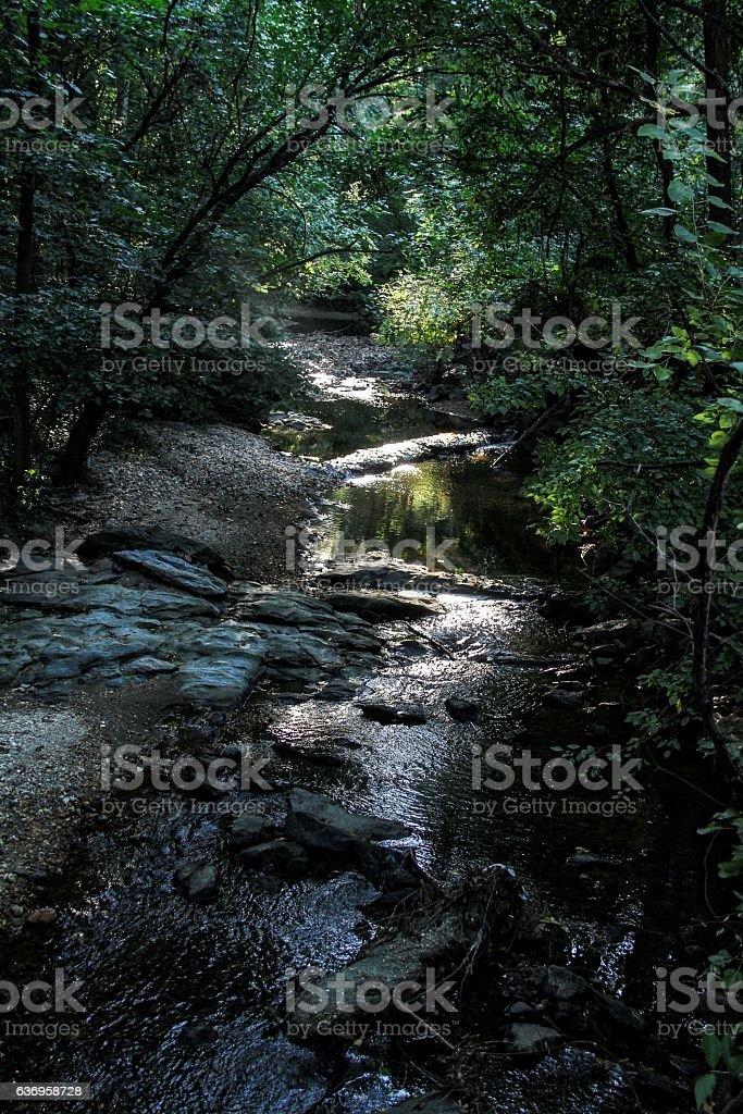 Babbling Brook stock photo