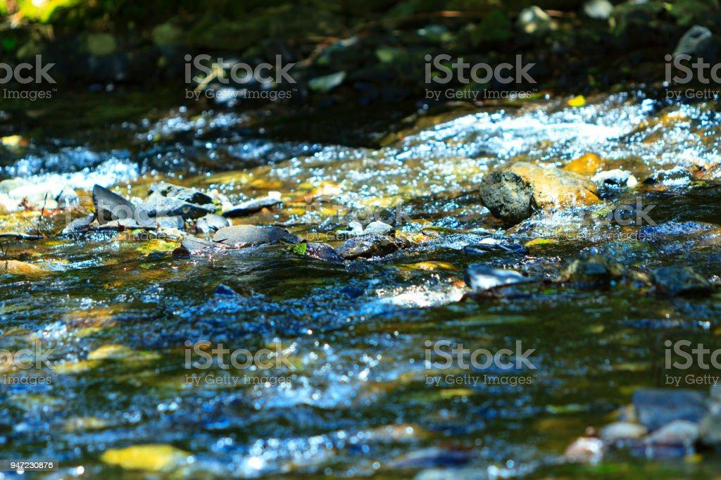 babbling brook. stock photo