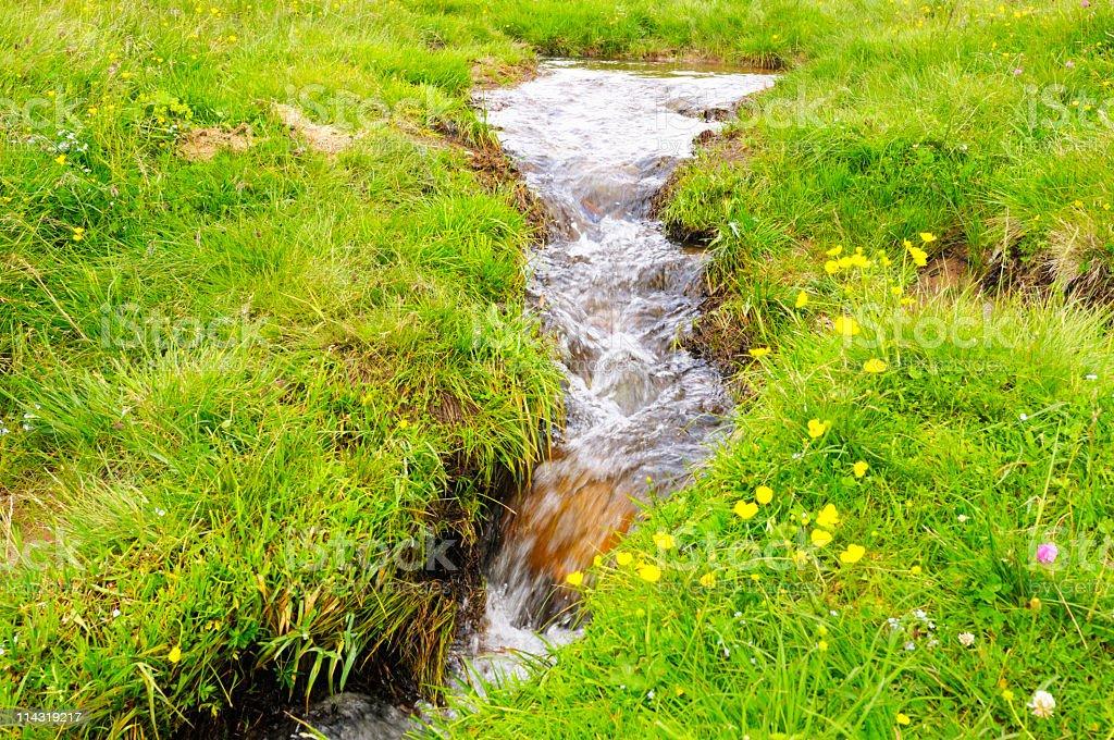 Babbling Upland Spring stock photo