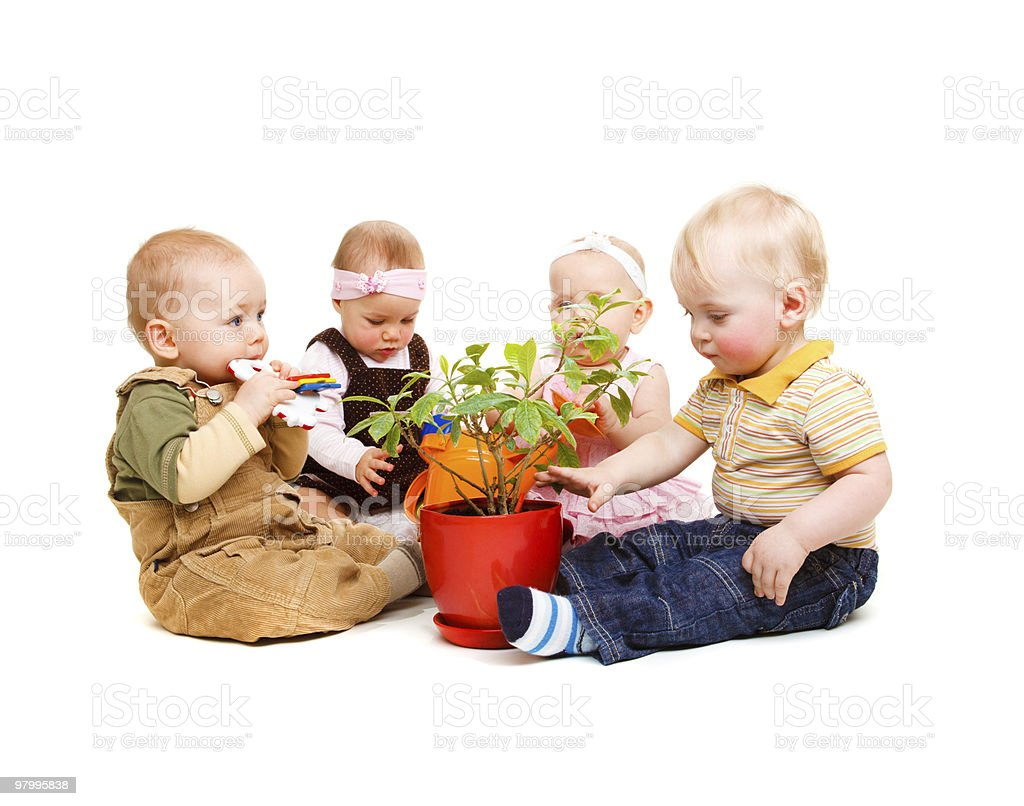 Babies and flower royalty free stockfoto