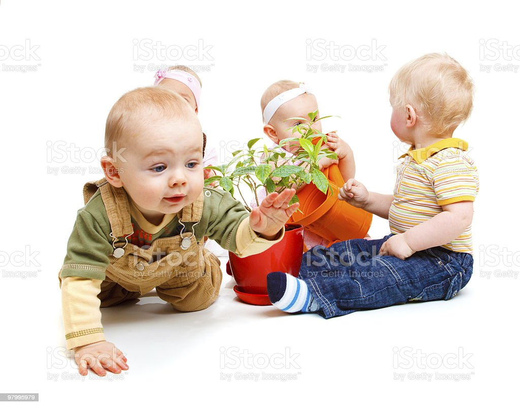 Babies group royalty-free stock photo