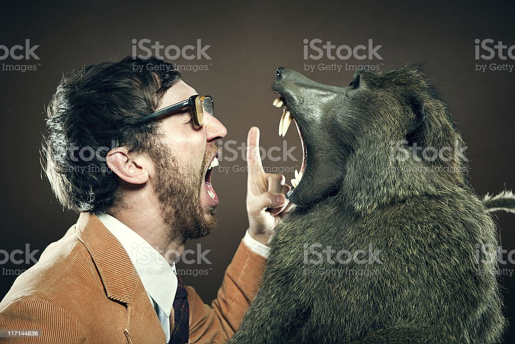Baboon and Man in Yelling Match stock photo