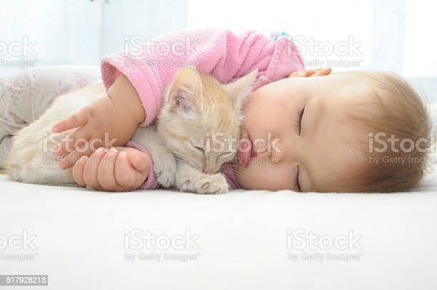 Baby and cat sleeping together picture id517928213?b=1&k=6&m=517928213&s=612x612&h=2firfgh4eezed20tovr 3sygki2lac78qodezhuydos=