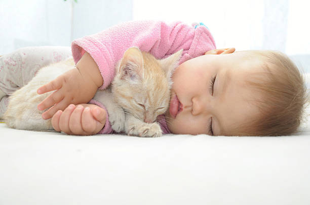 Baby and cat sleeping together picture id517928213?b=1&k=6&m=517928213&s=612x612&w=0&h=5vb 6pku1m9khpby71w81ka8nxe rwiqlu62geoezwi=