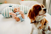 istock baby and dog playing around 1059604140